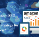 Why is Amazon SEO High Demand Marketing Strategy for your Business?